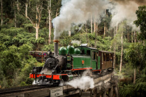 Puffing Billy Steam Train chugging through the rainforests